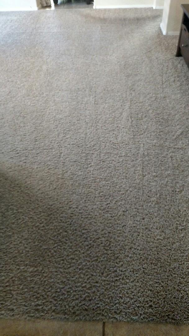 Gilbert, AZ - Cleaned carpet for a new PANDA customer in Lyons Gate, Gilbert AZ 85295.