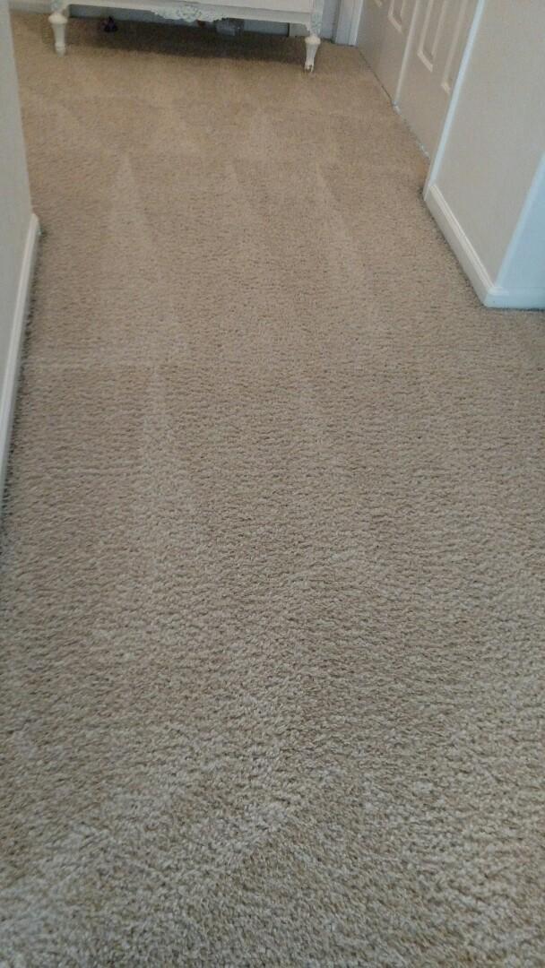 Gilbert, AZ - Cleaned carpet for a regular PANDA family in Gilbert, AZ 85233.