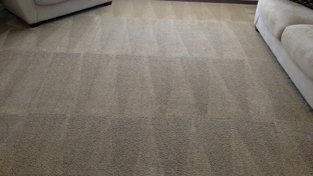 Chandler, AZ - Cleaned carpet for a new PANDA family in Chandler, AZ 85249.