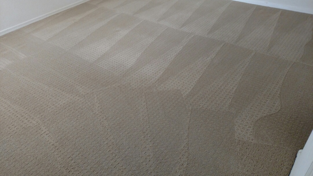 Cleaned carpet and an area rug for a regular PANDA family in Sun Lakes, Chandler 85248.