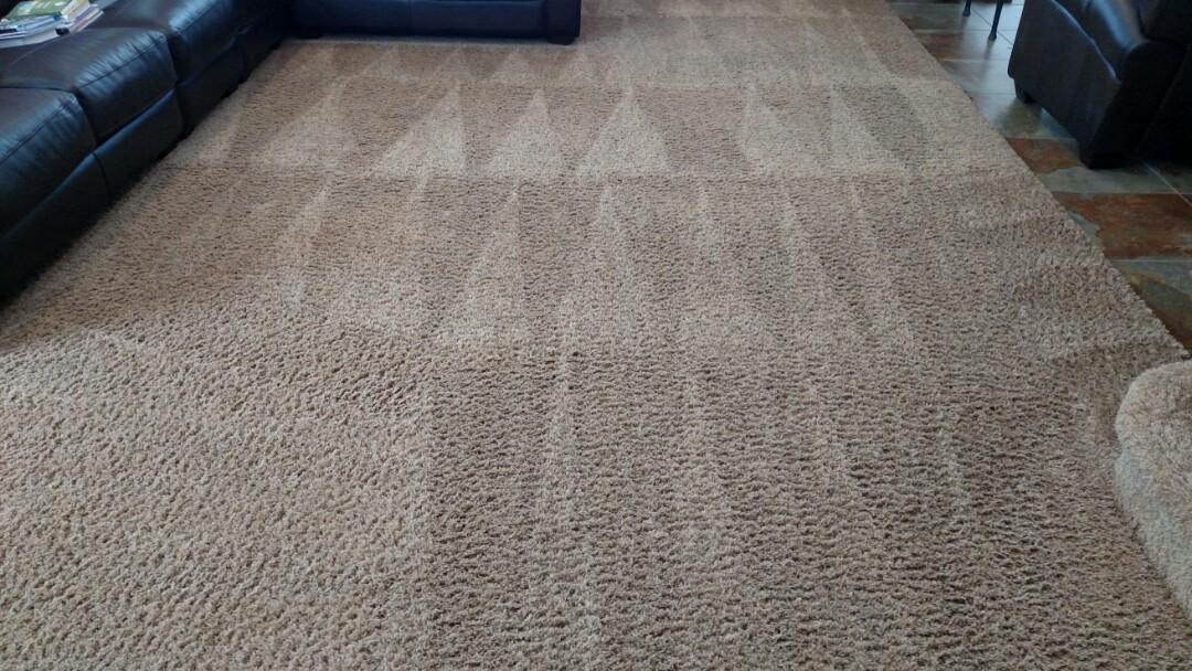 Chandler, AZ - Cleaned carpet for a regular PANDA family in Chandler, AZ 85249.