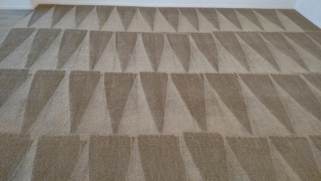 Gilbert, AZ - Cleaned carpet for a new PANDA family in Lyons Gate, Gilbert, AZ 85295