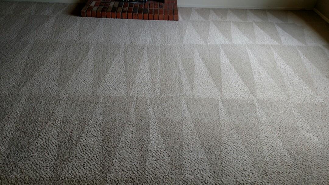 Chandler, AZ - Cleaned carpet for a regular PANDA family in Chandler, AZ 85226.