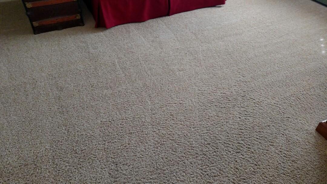 Chandler, AZ - Cleaned carpet for a regular PANDA family in Chandler, AZ 85225.