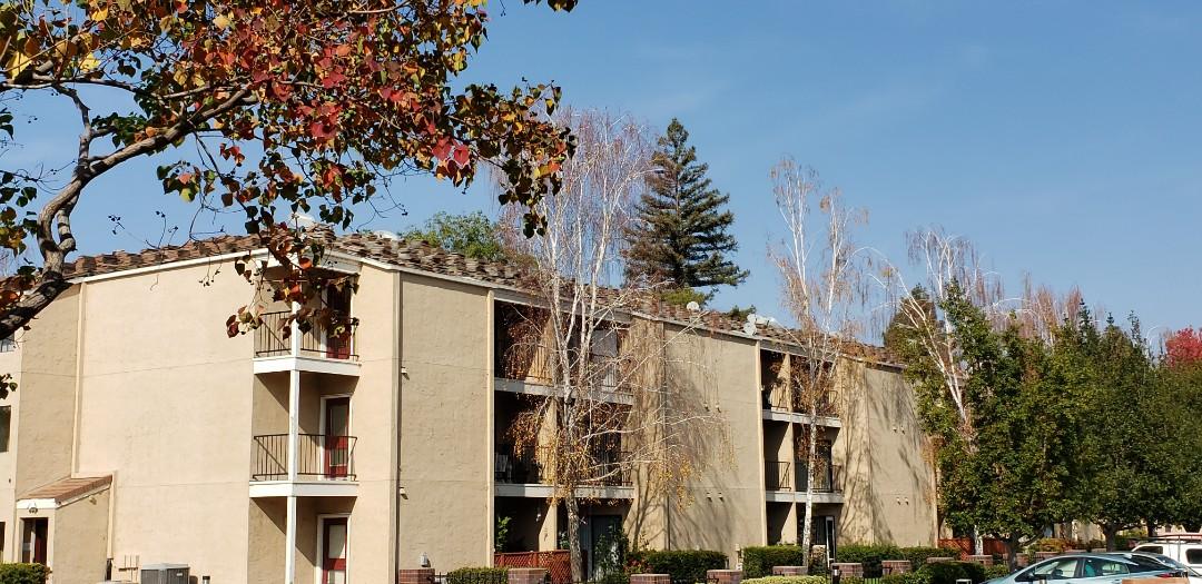 San Jose, CA - Placing roof tiles.