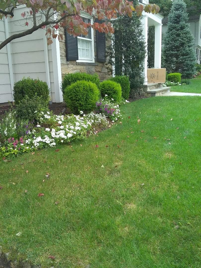 Millburn, NJ - Estimate for lawn care services!!! =)