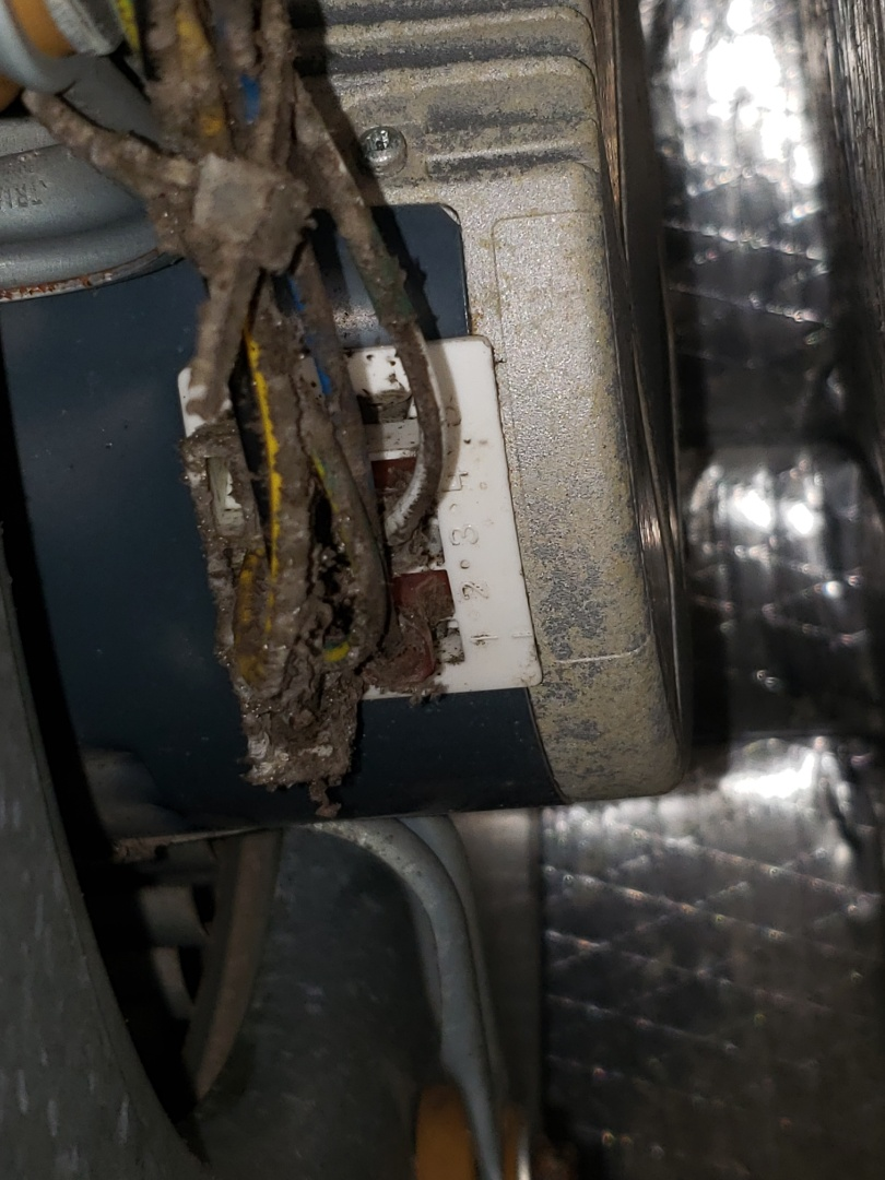 Corpus Christi, TX - ECM blower motor failed. I replaced the motor and now it's working great!
