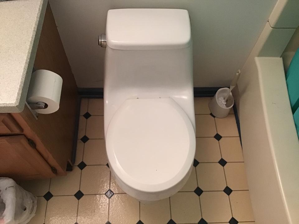 Pull and reset toilet in Barnegat NJ.