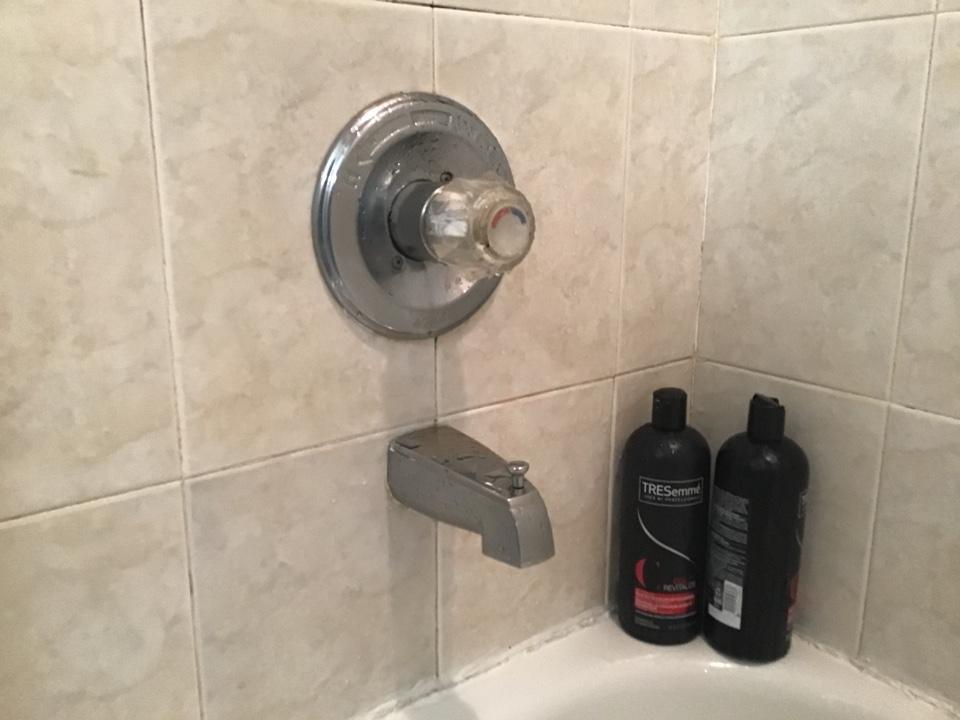 Rebuilt Delta Monitor Shower valve in Toms River NJ.