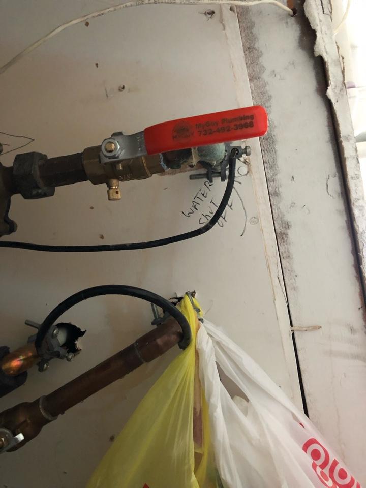 Main shutoff valve