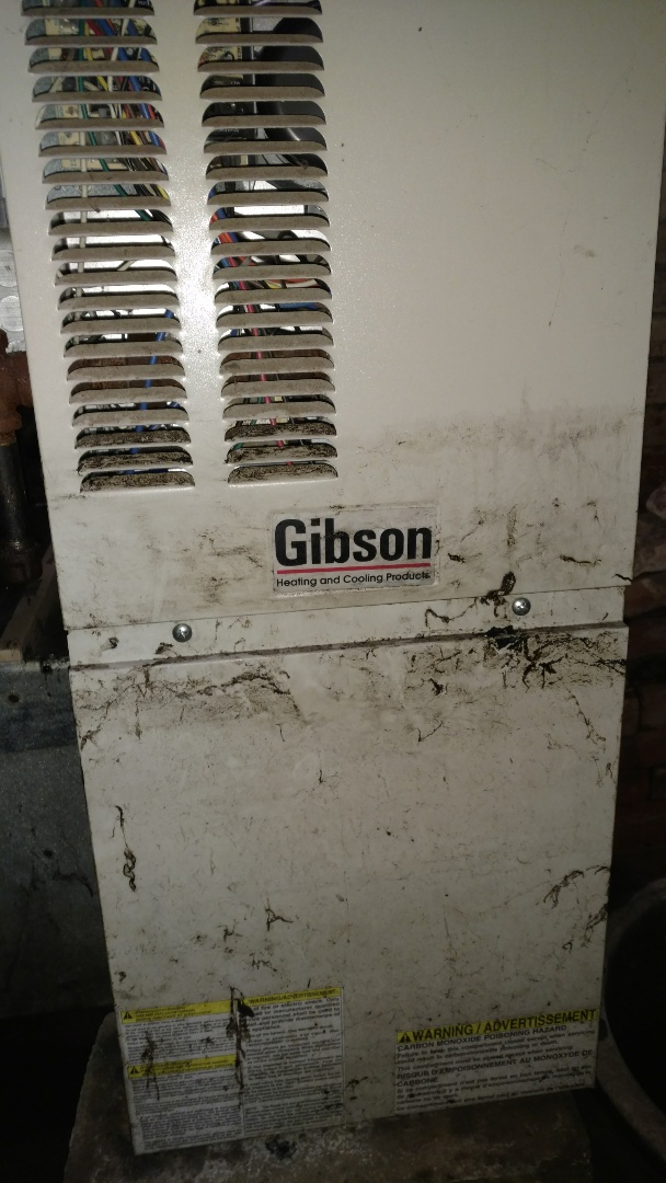 Catawba, WI - Perform preventive maintenance check on Gibson LP gas furnace.