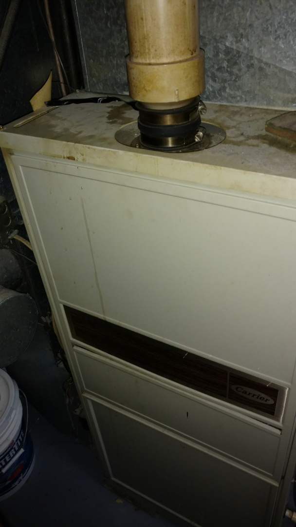 Park Falls, WI - Perform preventive maintenance check on Carrier Weathermaker furnace. Caulk condensate leak.