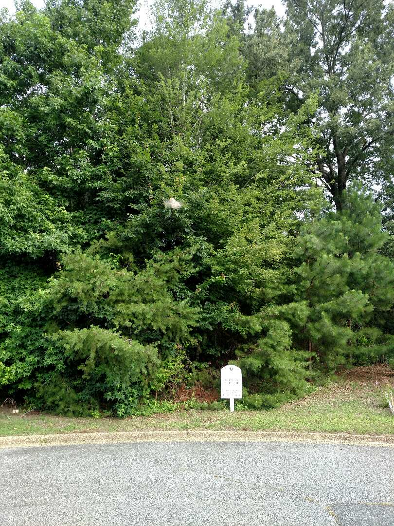 Smithfield, VA - Wooded lakefront lot available for a build to suit new construction home