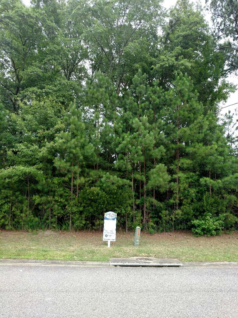 Carrollton, VA - Lot available for a build to suit package of a Custom Home