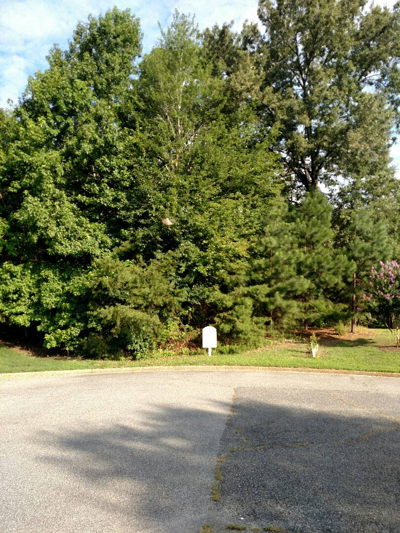 Smithfield, VA - Lot available for custom home on the lake.  Build to suit