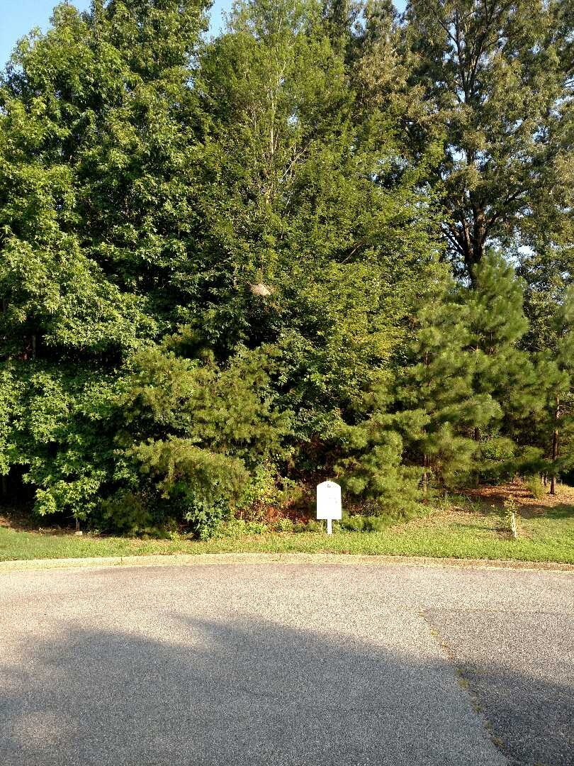 Smithfield, VA - Lot available for a custom home build to suit