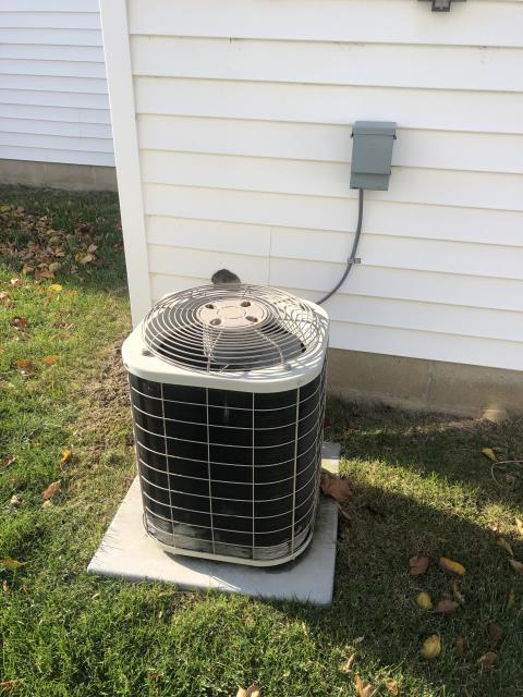New Albany, OH - There is a water meter that is directly in front of filter rack, that makes it tough to remove and install filters, you would need to bend filter up and inch it in, Installed new filter for customer and showed customer how to remove and reinstall filter, also showed customer about installing filter in cabinet under blower as an alternative option, Customer would like us to see if there is anything that we can do to raise filter rack so it would be above water meter, There are photos attached to job, System operational at departure.