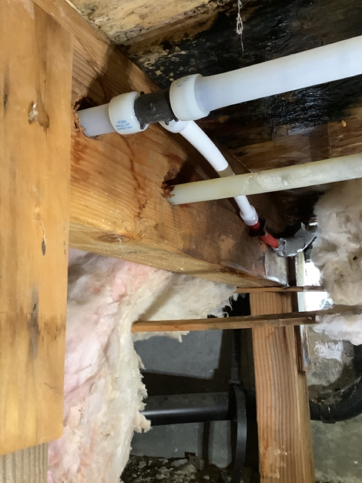 Prineville, OR - Hot water line repair under house. Removal of failed pipe. Installation of new pex fittings and pex pipe.