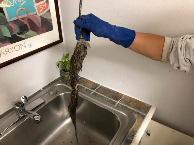 Dallas, TX - Found Laundry Drain line backed up in laundry room sink.  Utilized camera to scope the line.  Found no broken pipes.   Used sewer cable to snake the line.  Found line clogged by roots penetrating through the sewer line below the slab.  Removed the clog, drains are functioning properly