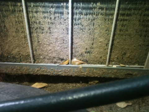 Farmers Branch, TX - Carrier air conditioner tune up and found the ac being buried in mud. A good thourough wash and electricity use dropped to normal levels.