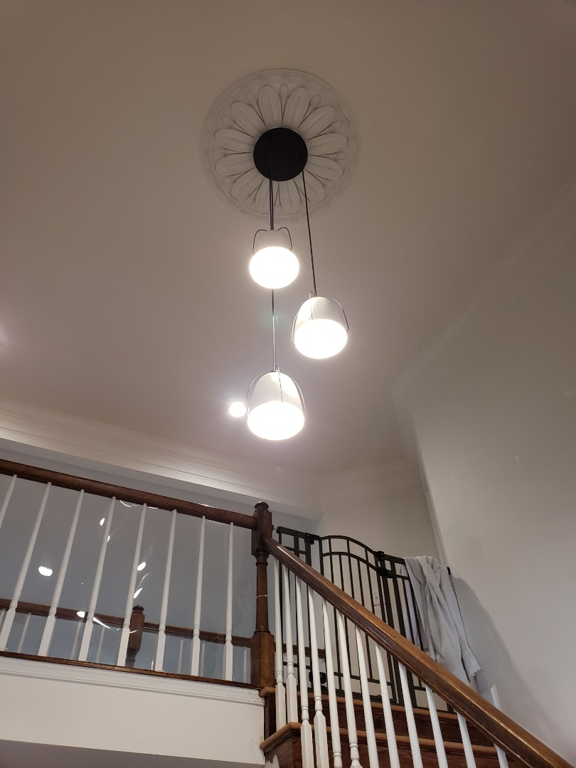 Severna Park, MD - New foyer light changed out ceiling lights to Led trims