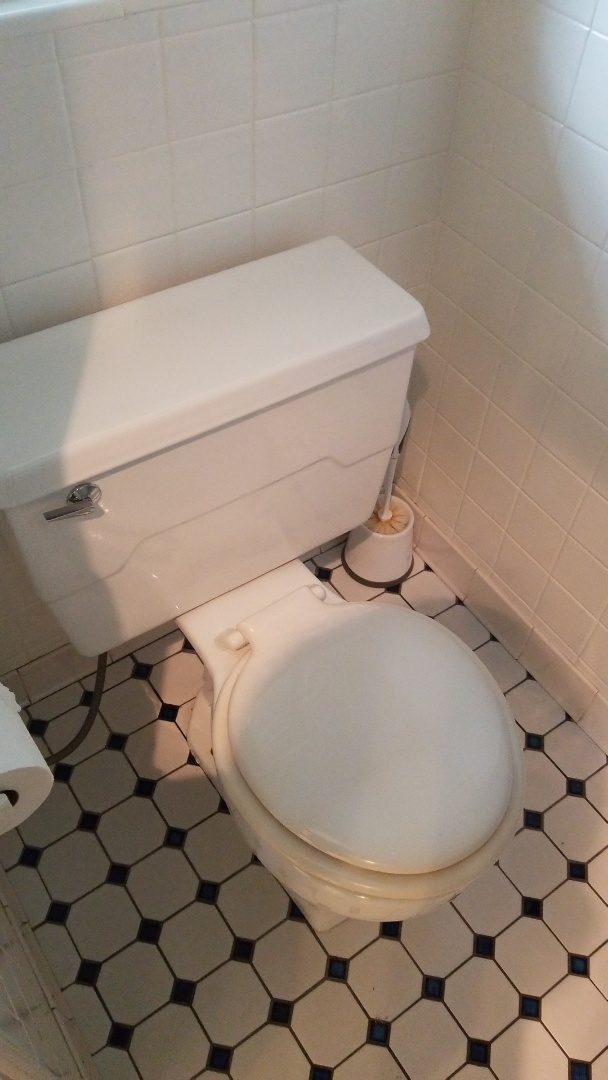 Brighton, MI - Toilet replacement