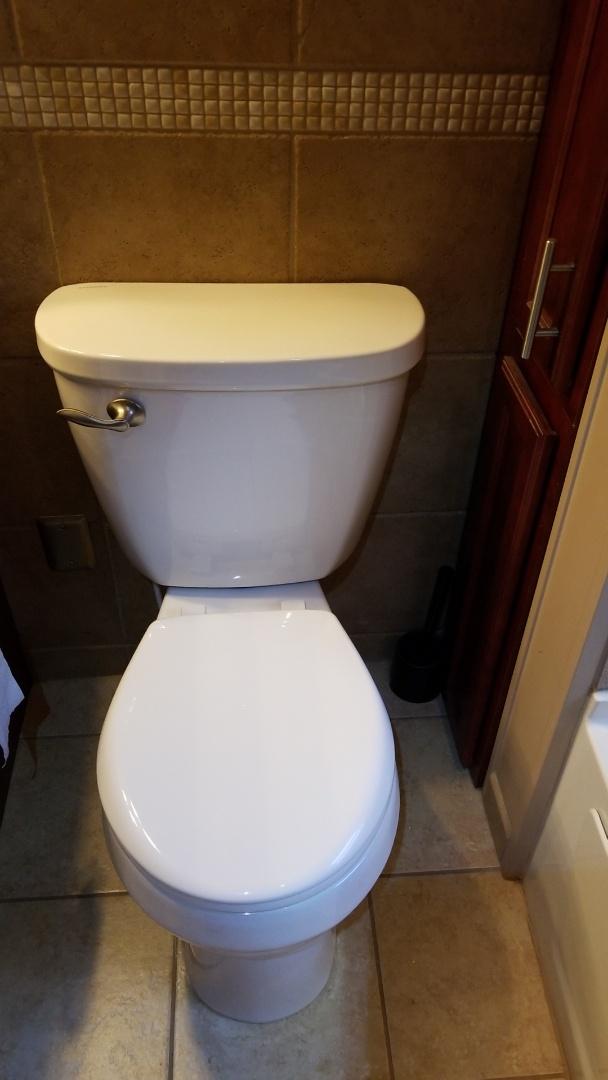 Brighton, MI - Install of two mew toilets