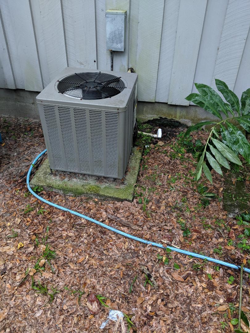 Crystal River, FL - Flushed out condensate line on Rheem heat pump split system