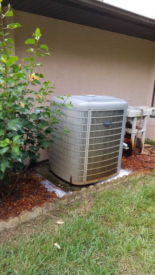 Crystal River, FL - Check up on a carrier infinity 4 ton heat pump