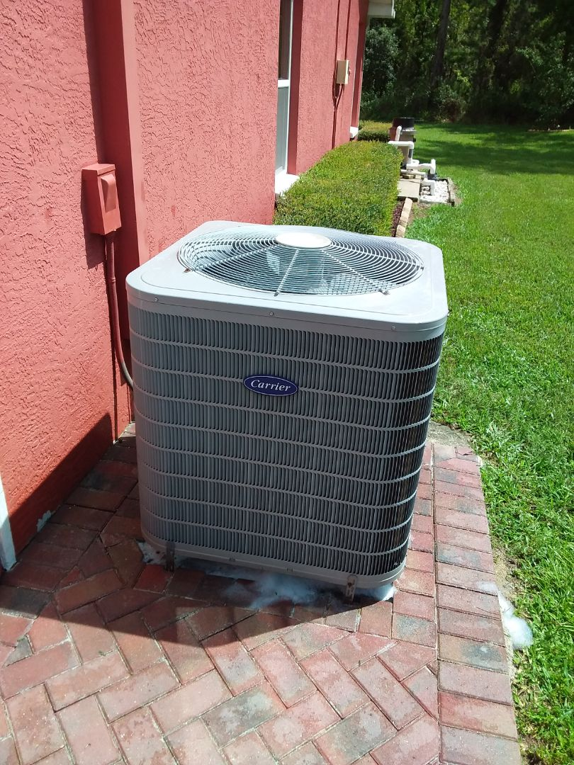 Hernando, FL - Check up on a 4 ton carrier infinity heat pump ac system