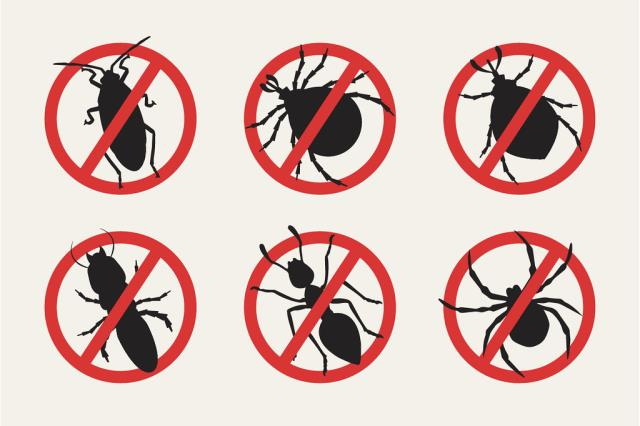Jasper, AL - Our technician, rendered a quarterly pest control service for general purposes.