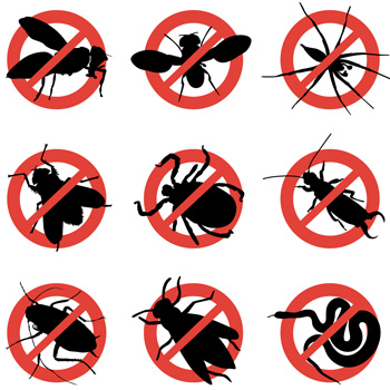 Moulton, AL - Monthly Residential Pest Control Moulton Alabama