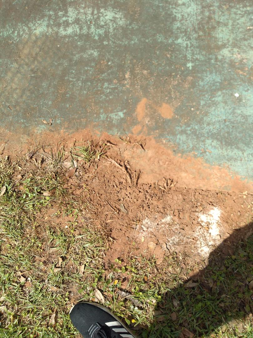 Spanish Fort, AL - New residential pest control service. Customer has fire ants all around the house. After a granular and liquid treatment, next service the issue should be resolved.