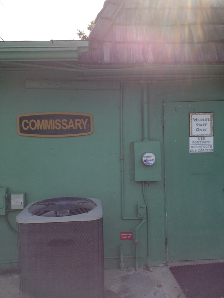 Loxahatchee, FL - We are at lion country safari. We pulled two blowers for the commissary building and cleaned.