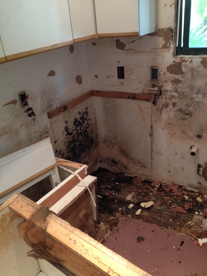 Palm Beach, FL - EAQS is doing mold remediation for mr Parker in palm beach island. Building containments removing walls cabinets and dish washer