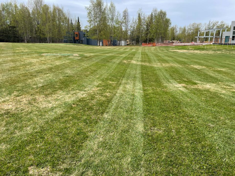 Anchorage, AK - Walker lines sure make a spring cleanup pop. Can't wait for this grass to finish coming out of hibernation. It's going to look sharp!
