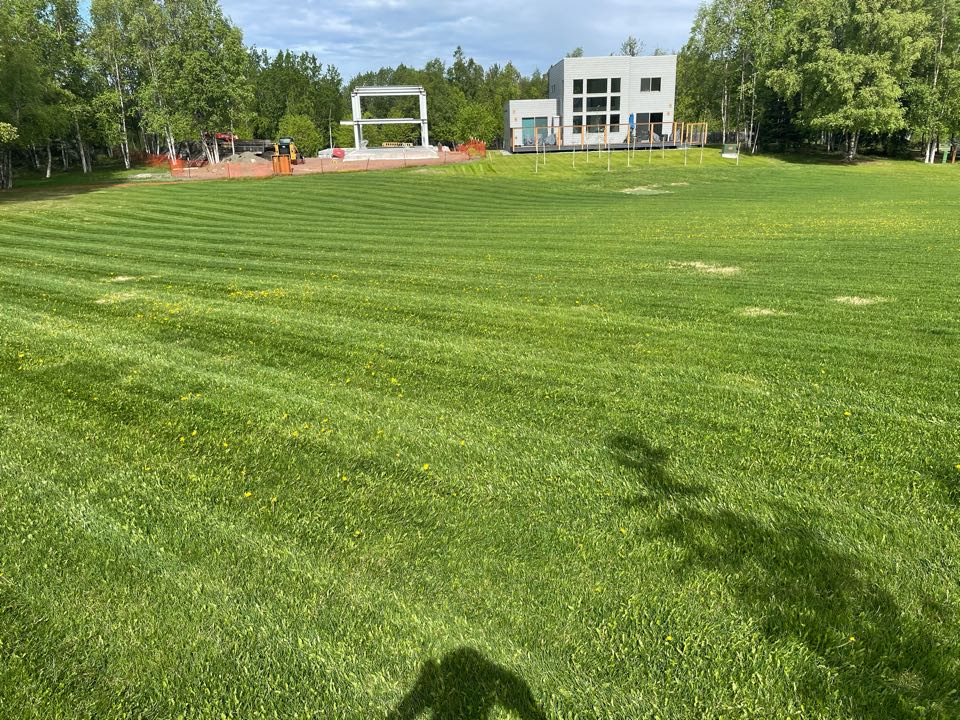 Anchorage, AK - Laying #scag lawn stripes today. Hopefully next week we can spray these dandelions with an #exmark sprayer.