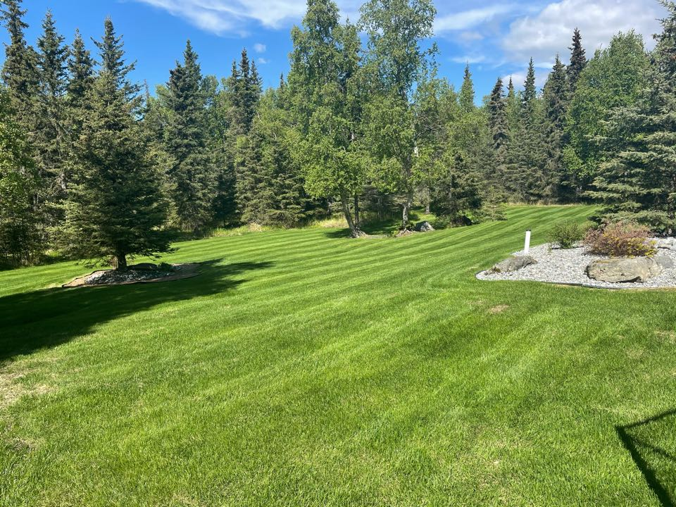 Anchorage, AK - Laying scag stripes. What a great weekend to be out on the lawn!