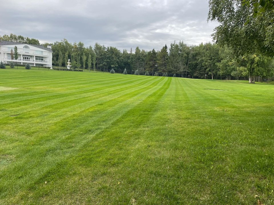 Anchorage, AK - One of my favorite lawns in Anchorage! I love maintaining this property and can't wait to start snow blowing it too!