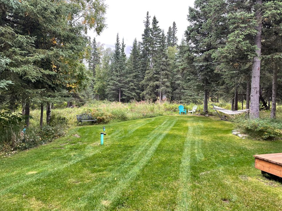 Anchorage, AK - Little bit of lawn, a lot of nature. Alaska backyards are different!