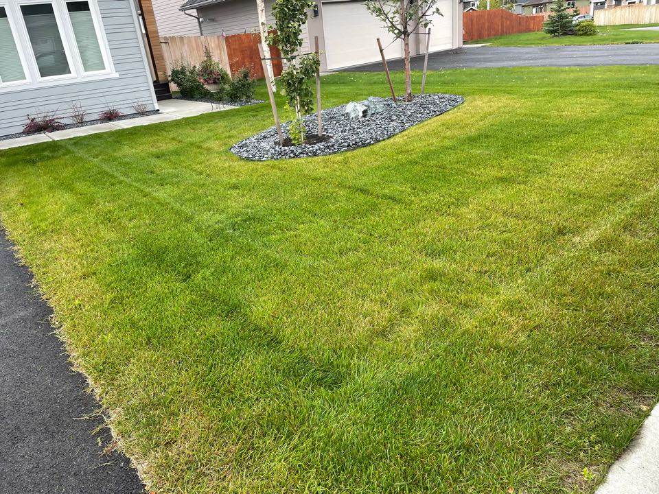 Anchorage, AK - Gray rocks in the landscaping look awesome. The lawn mowing job ain't half bad either for wet grass…