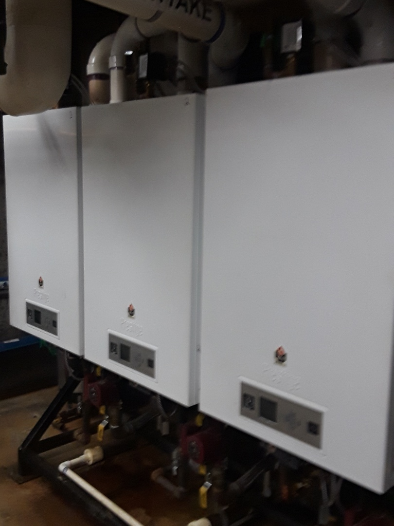 Fitchburg, MA - Clean and check Triangletube gas boilers