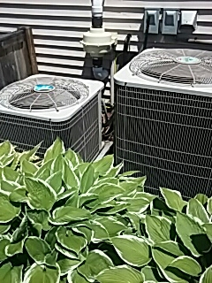 Webster, MA - Clean and check Bryant AC units