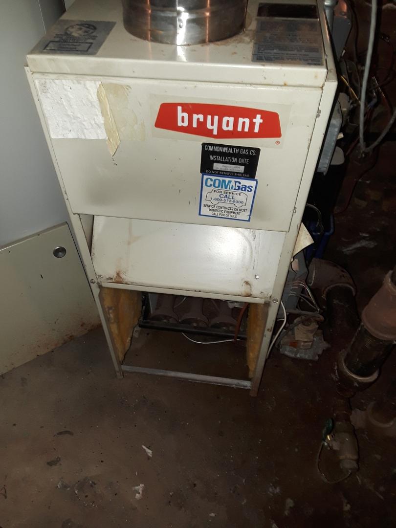 Shrewsbury, MA - Ckean and check Bryant gas steam boiler