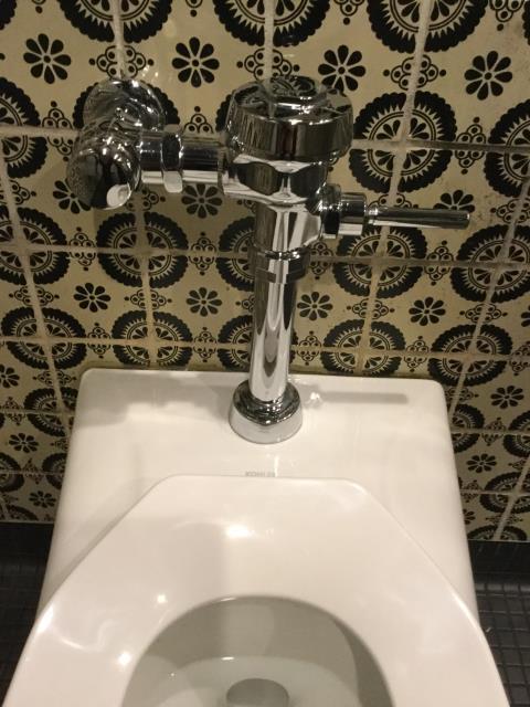 Gaithersburg, MD - Replaced sloan valve on men's bathroom toilet.