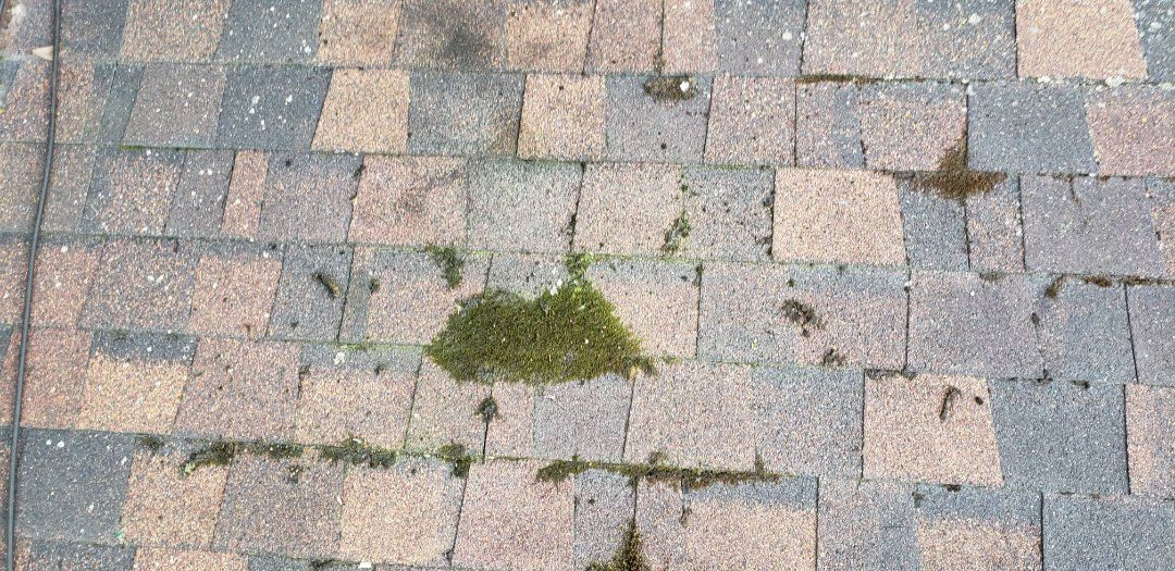 97% of all complaints of roofers on the BBB comes from home owners who award the low bidder the project. I always feel terrible when called out by people who have a newer roof installed by a unskilled roofer using subpar materials and cuts corners. This shingle has already failed from Algae and lichen plus water leaking from bad flashing work. An algae resistant shingle for a few extra dollars and a quality roofer would have added 20 years to the roof. Who is on your roof? #KingdomCulture