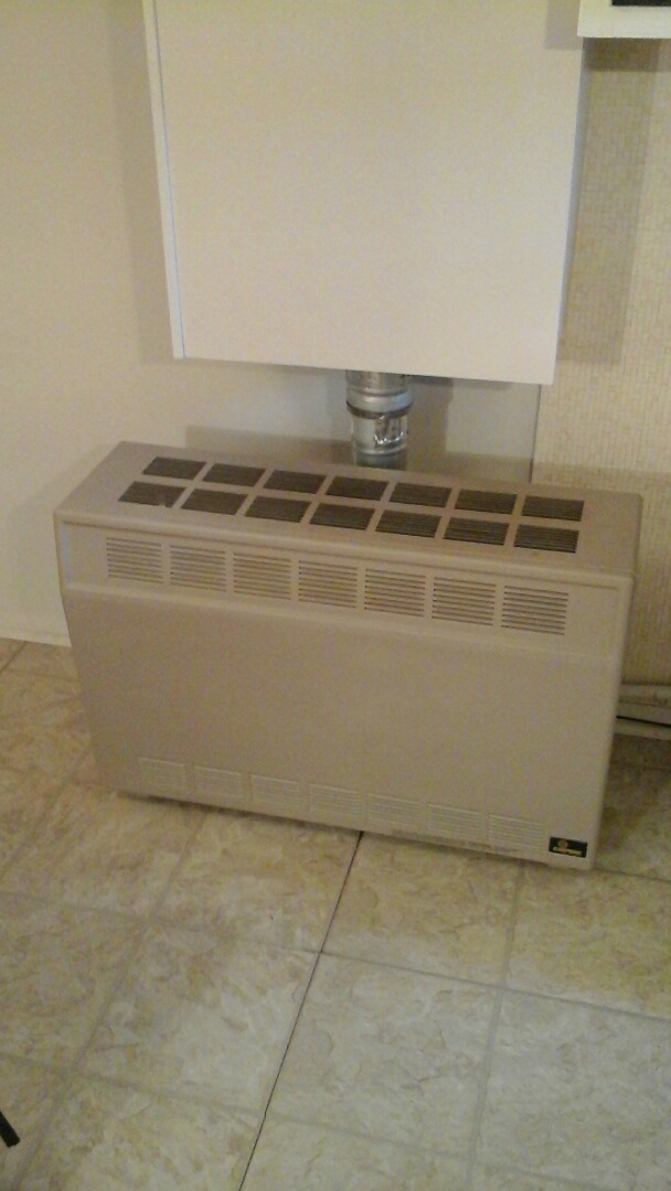 Homer, MI - Performed a precision tune-up on 2 Empire vented room heater with natural gas supply and spark ignition.