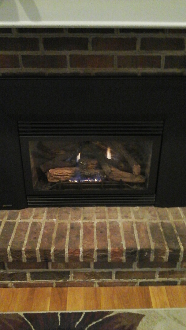 Homer, MI - Fireplace tune-up winter maintenance