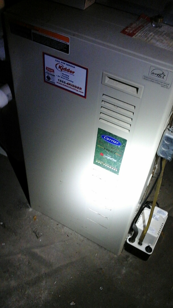 Athens, MI - Carrier furnace repair ignitor