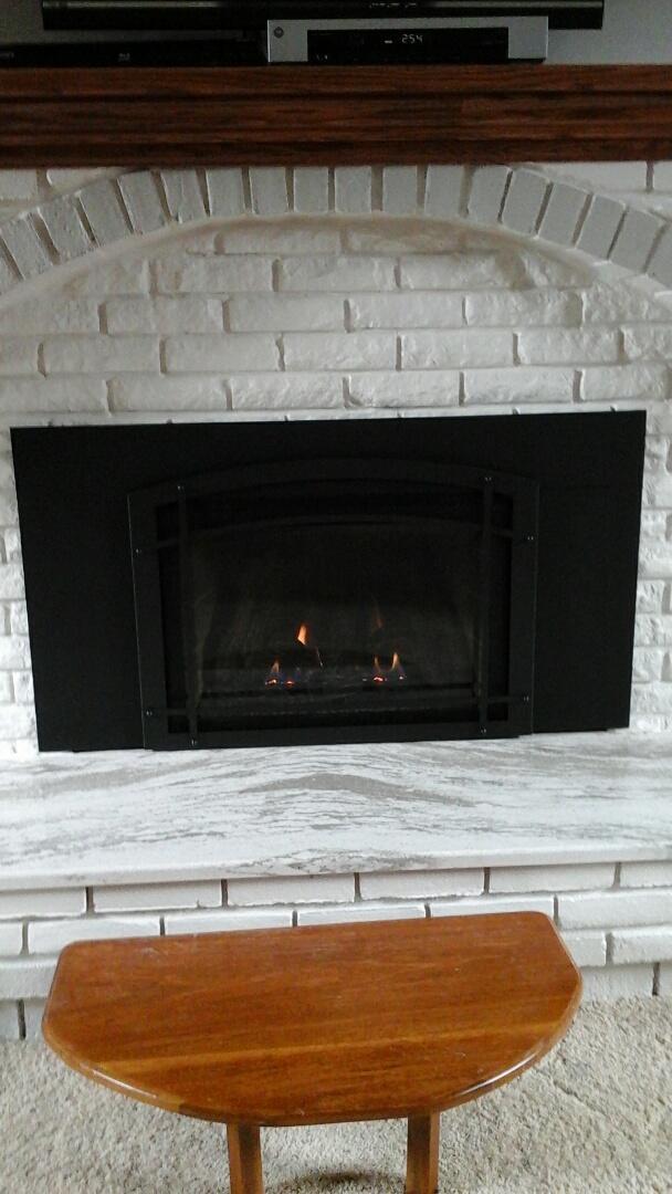 Coldwater, MI - Kozy heat fireplace insert install
